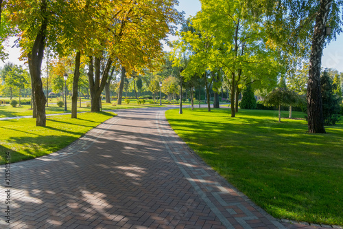 A wide alley in the park is paved with tiles with green