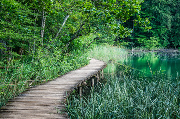 Plitvice National Park, Croatia. Wood plank path through green forest and over the water