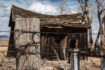 Fencepost, Barbed Wire and Cabin