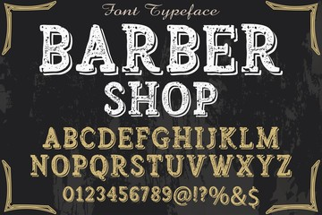 Hand drawn typeface set Brush painted characters lowercase and uppercase. Handwritten script font. Typography alphabet for your designs