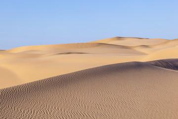 sand dune in sunrise in the sonoran desert