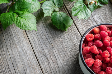 Bowl full of raspberry berries and leaves on wooden board. Top view. Copy space for text.