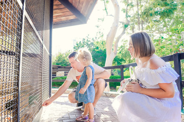 Cute toddler child girl and her parents feeding rabbits sitting in cage at the zoo or animal farm. Outdoor fun for kids. Family rest, spending time together concept. Selective focus. Copy space.