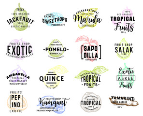 Exotic tasty tropical fruits promo sketch icons
