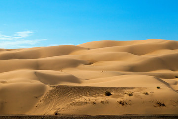 Off Road Vehicle Tracks on Yuma Sand Dunes