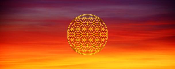 Blume des Lebens - Kosmischeslicht
