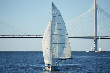 Yachtsmen participating in sport competition on sailing during windy weather, modern bridge with unique design behind them