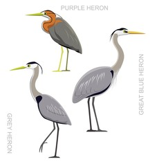 Bird Heron Set Cartoon Vector Illustration