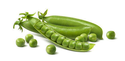 Fresh green peas in pods. Horizontal composition