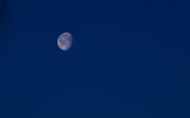Rising moon at the blue hour
