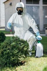 pest control worker in uniform spraying pesticides on bush