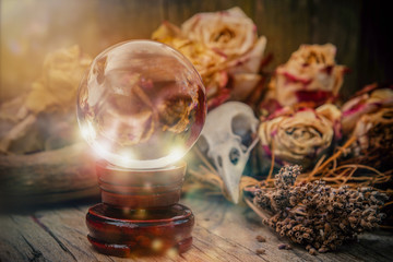 Crystal orb in front of dryed roses and a ravenskull-magic scene