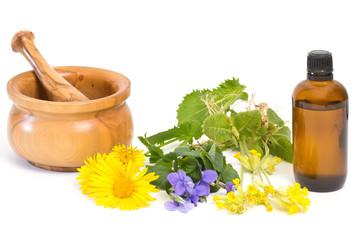 Medicinal plants against cough
