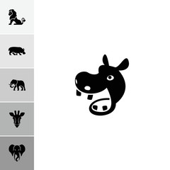 Collection of 6 safari filled icons