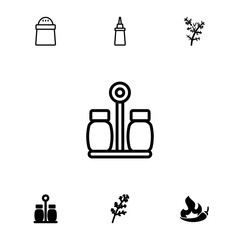 Collection of 7 spice filled and outline icons