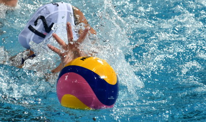 Hand try to reach the waterpolo ball in the swimming pool.