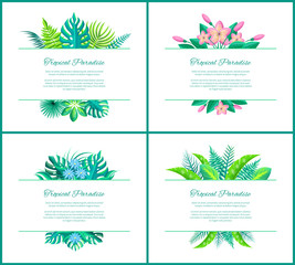 Tropical Paradise Banner with Exotic Plants Leaves