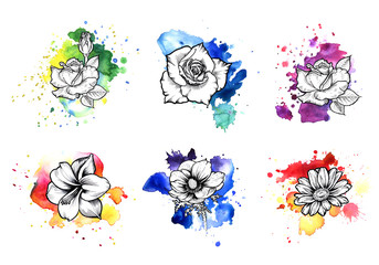 A bright colorful formless watercolor blot.  Rose, Poppy and daisy ink flower line graphic