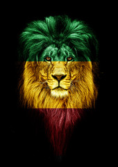 Printed roller blinds Lion Portrait of a Beautiful lion, faceart and patriotism concept. Portrait of a leader. king. Portrait of a lion with a projection of the flag of the Ethiopia. Patriot of his country