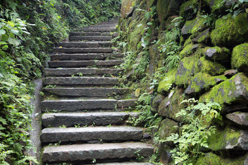 July 2018, Wuyuan, China. Walk way, Pathway, humidity, moss. Stone steps going up the mountain sided with stone staged wall that covered in green wet moss.