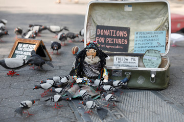 "Stuffed pigeon sculptures made by Tina Trachtenberg, also known as ""Mother Pigeon"" are seen for sale at Union Square in Manhattan"