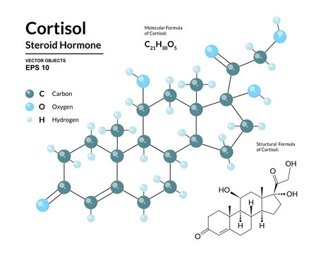 Cortisol. Steroid Hormone. Structural Chemical Molecular Formula and 3d Model of Stress Hormone. Atoms are Represented as Spheres with Color Coding. Vector Illustration