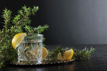 Photo sur Aluminium Eclaboussures d eau Gin , tonic with slices of lemon and a sprig of juniper .