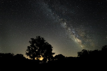 Milky Way over the forests near Santibañez el Bajo. Extremadura. Spain.