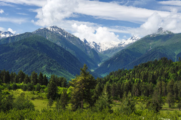 Amazing landscape of green hills covered with grass and snow mountains on sunny summer day in Georgia. Picturesque lands in Svaneti. Trees, meadows, mountains and blue sky with white clouds.