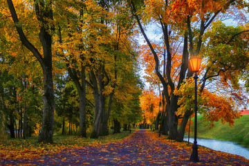 Autumn alley in park. Landscape of amazing autumn colorful alley with yellow and red trees. Path between trees covered colored leaves. Fall in park. Scenery of beautiful colors of autumn nature.