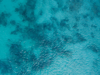 Background image of the turquoise sea. Deep sea and corals. Top view of beautiful Caribbean Sea. Aerial drone shot of turquoise sea water - space for text. Aquamarine Sea background