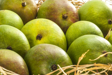 Raw mangoes on dry grass
