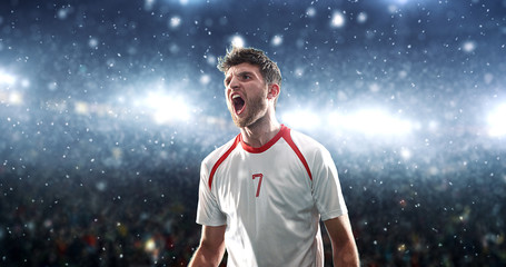 Soccer player celebrates a victory on the professional stadium while it's snowing.