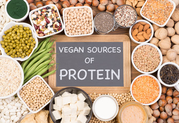Protein in vegan diet. Food sources of vegan protein Wall mural