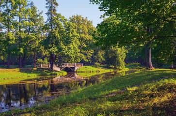 Summer Landscape in Alexander Park (Tsarskoye Selo, Pushkin), Russia.