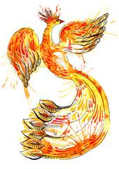 glow bird phoenix