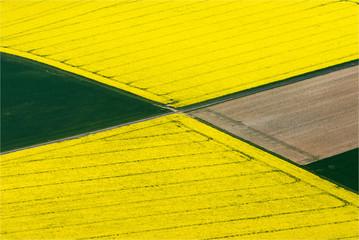 Papiers peints Jaune vue aérienne de champs de colza à Saint-Laurent-la-Gâtine en Eure-et-Loir en France