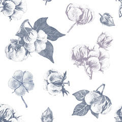 Cotton seamless pattern
