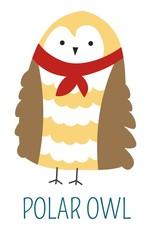 Polar owl in scarf childish book cartoon character