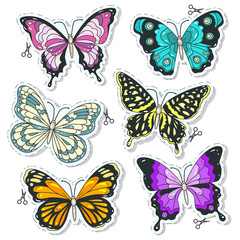 Vector colorful icons, set various decorative butterflies