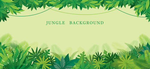 Tropical Jungle Frame, Forrest, Plant and Nature, Background Wall mural