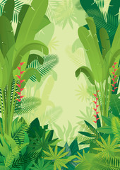 Tropical Jungle Light Background, Forrest, Rainforest, Plant and Nature
