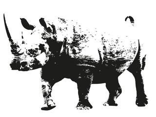 Rhinocéros silhouette