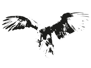 Aigle silhouette