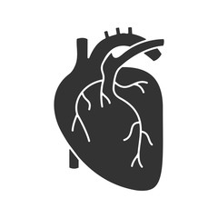 Human heart anatomy glyph icon