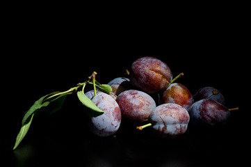 Plums ripe and juicy shot close-up on a dark background