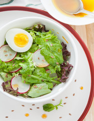 Summer salad with radish and egg with sauce