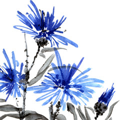 Blue flowers, watercolor illustration, oriental traditional painting in style sumi-e and u-sin, decorative composition on a white background