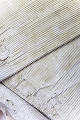 Dry Cardboard Texture