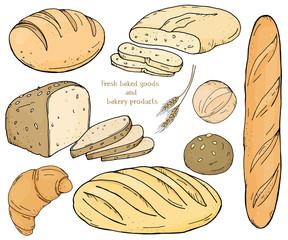 Set with bakery products on a white background. Baguette, loaves, rye bread, ciabatta and scones. Vector illustration in sketch style.
